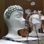 Das p?dagogische Hirn - Aktionsausstellung