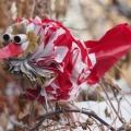 Vogel aus Plastiktüte