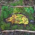 Landart: Blätter-Bild