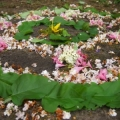 Landart: Blüten-Mandala